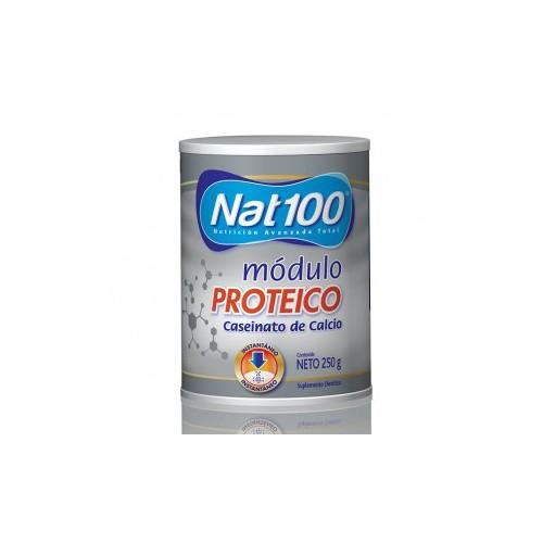 NAT 100 PROTEICO